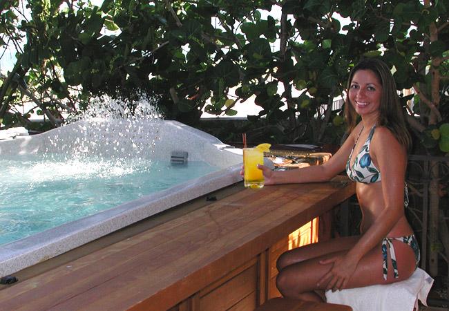 swim spa specifications